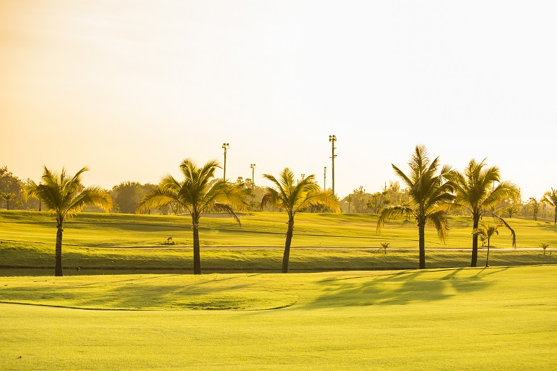 st pete golf courses florida vacation