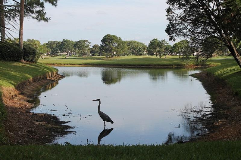 destin golf courses fl top
