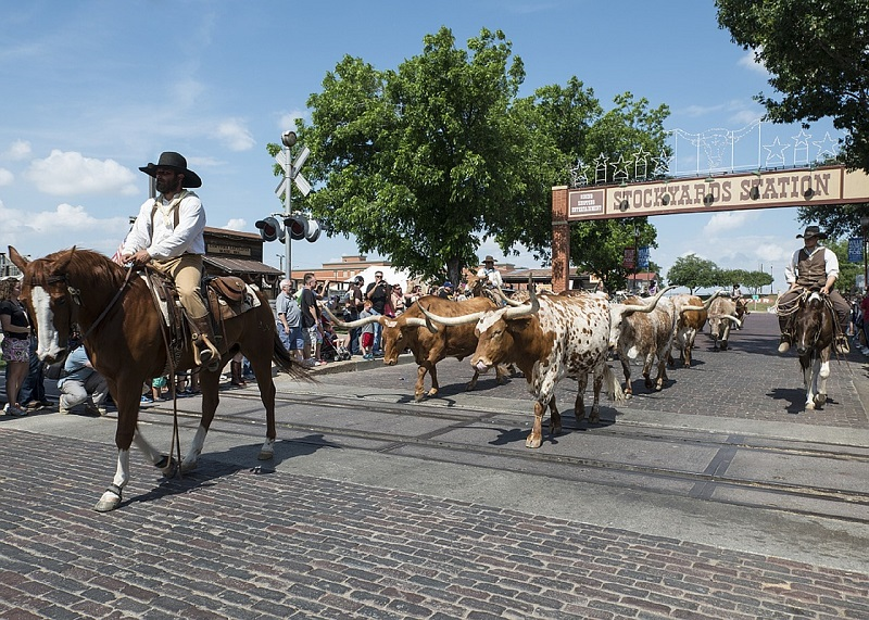 fort worth outdoors stockyards