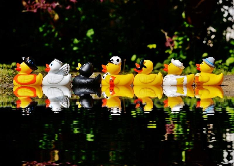 aspen festival annual duck derby